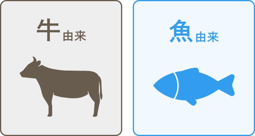 牛由来、魚由来